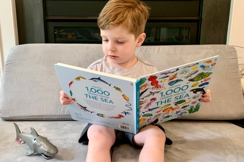 Ocean Books for Preschool Kids Toddling Traveler