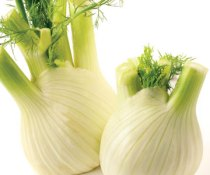 Grow Your Own Fennel