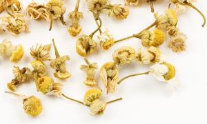 chamomile herbal remedies