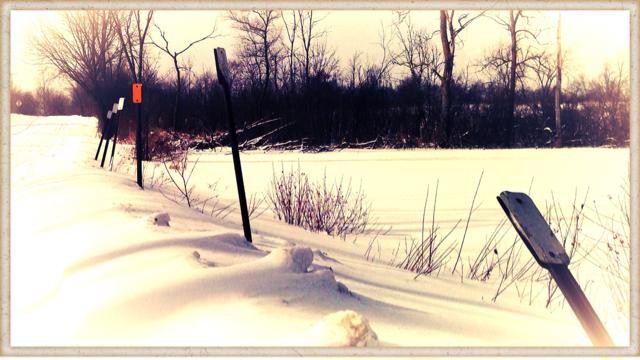 Frozen Distance