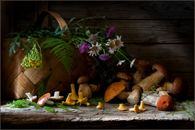 Still Life with Mushrooms and Wild Flowers