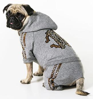 onde-comprar-roupa-frio-cachorro-1
