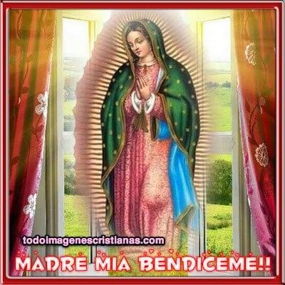 imagenes religiosas de la virgen de guadalupe