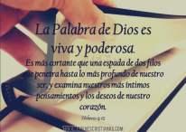 Imágenes Cristianas: Dios te ama todos los días
