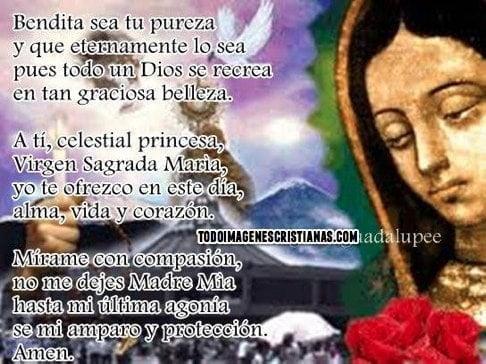 imagenes cristianas de la virgen de guadalupe