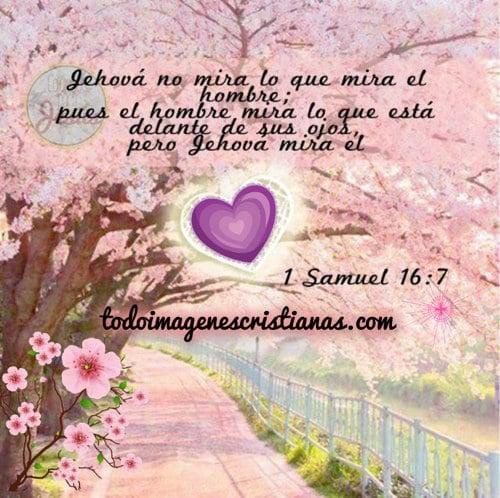 imágenes cristianas con salmos samuel 16:7