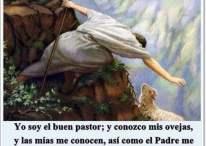 Imágenes cristianas: Yo soy el buen pastor; y conozco mis ovejas