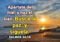 Imágenes de Salmos: Apártate del mal, y haz el bien