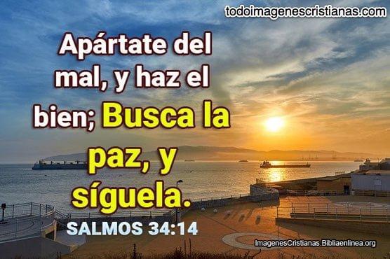 Salmos-34-14
