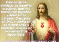 Dios no se ha olvidado de tí, confía y Él te responderá