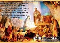 Imágenes cristianas de Navidad con versículos sobre el nacimiento de Jesús