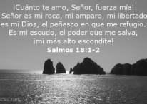 El Señor es mi roca, mi amparo, mi libertador