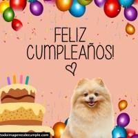 Imágenes de cumpleaños con perritos