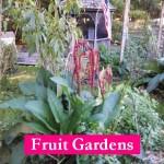 L1 Fruit 2