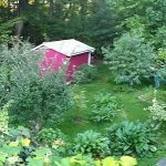 backyard food garden panorama
