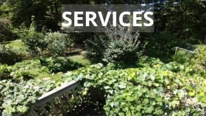 Food Forest Services
