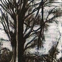 Murayama Kaita (1896-1919)