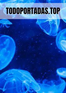 portada word azul aesthetic