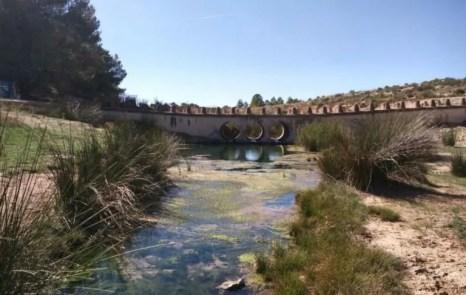 Nacimiento de Fuente Caputa en la rambla de la Perea.