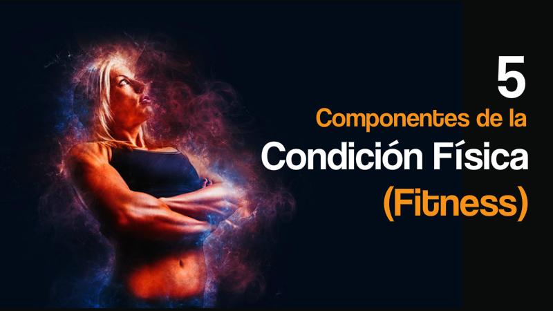 5 componentes de la condicon fisica