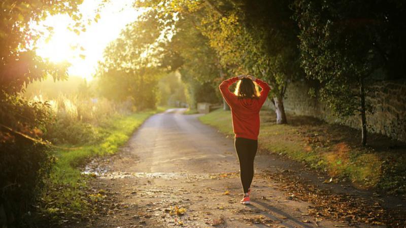 5 Razones por las que debes Caminar Todos Los Dias