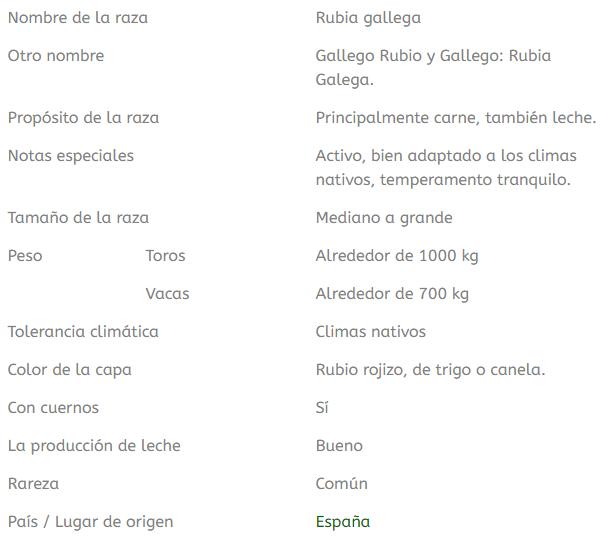 datos importantes sobre la raza de ganado rubia gallega