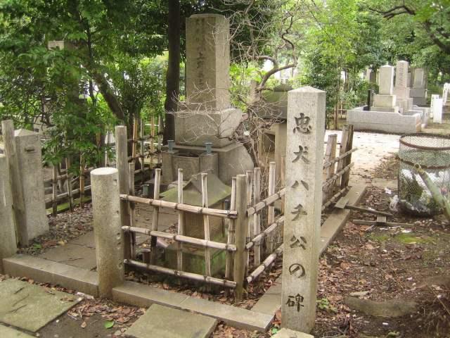 cementerio profesor Ueno aoyama hachiko