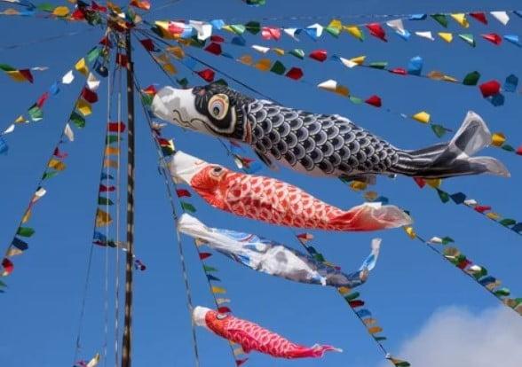 Koinobori in japanese golden week