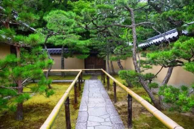 pasarelas bambú templo koto-in kioto