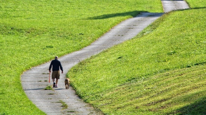 Empieza con una caminata lenta.