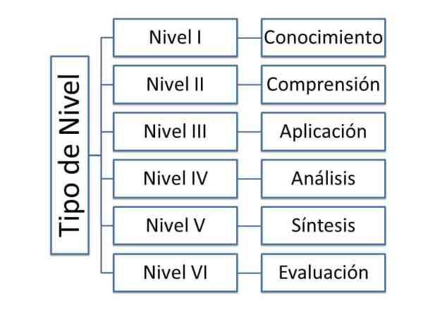 ¿En que consisten los objetivos generales y específicos de la tesis?