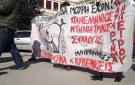 """Bandera Asociación Veterinaria de Epiro n en Ioannina. """"Todos los cerdos tienen el mismo hocico mismo"""" (dicho griego) que significa que los buitres corporativos, la troika y los gobiernos son todos iguales."""