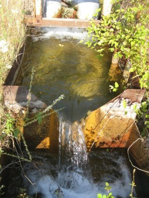 Agua en los bosques de Skouries en Calcidia contaminada por metales pesados