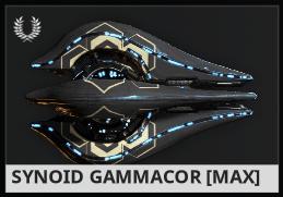 Synoid Gammacor EN