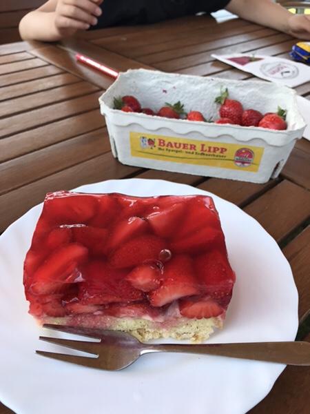 Bauer Lipp@Weiterstadt美味しいイチゴとイチゴケーキ