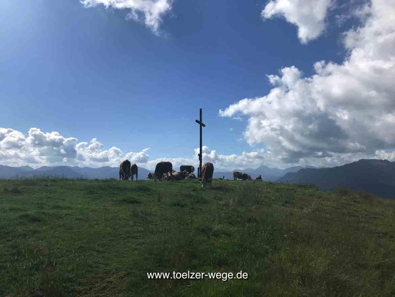toelzer wege aktivwege wilde wege blomberg wackersberg heigelkopf
