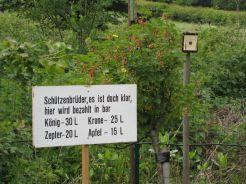 Schiessen 2010 15