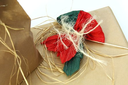 coledampfs-verpackung