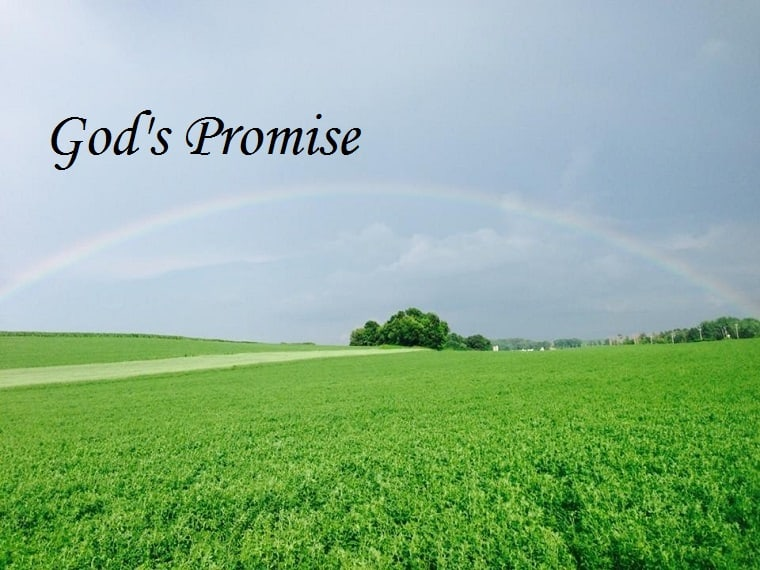 God's promise - rainbow