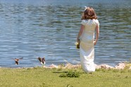 Chasing the ducks