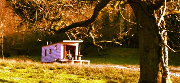 cabin-under-the-tree-caban-coch_cs_gallery_preview