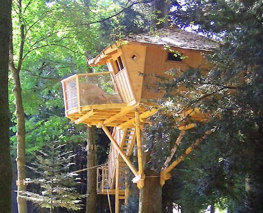 construire_cabane