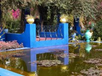 Maroc_Majorelle_9_NET