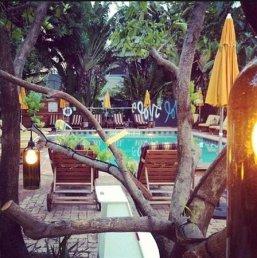pool-garden-area