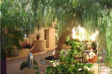 De-prachtige-groene-patio