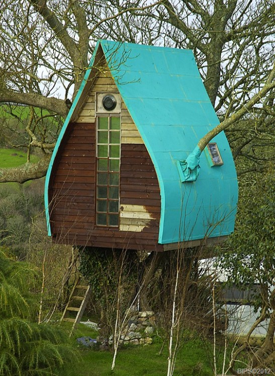 dsc_0011-mod1-treehouse-in-ash-tree-near-tregaminion-st-keverne-cornwall-28-1-2012-b2