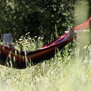hammock_bed_and_breakfast_o_tartufo_algarve_portugal__large-1