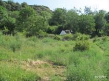 Rustiek-kamperen