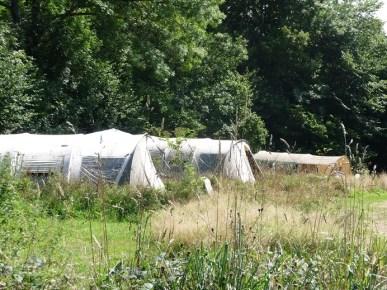 6530-Bardani ingerichte tenten midden in het groen van Camping Domaine Le Peyral