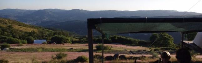 natuurcamping-quinta-rural-960x300_c